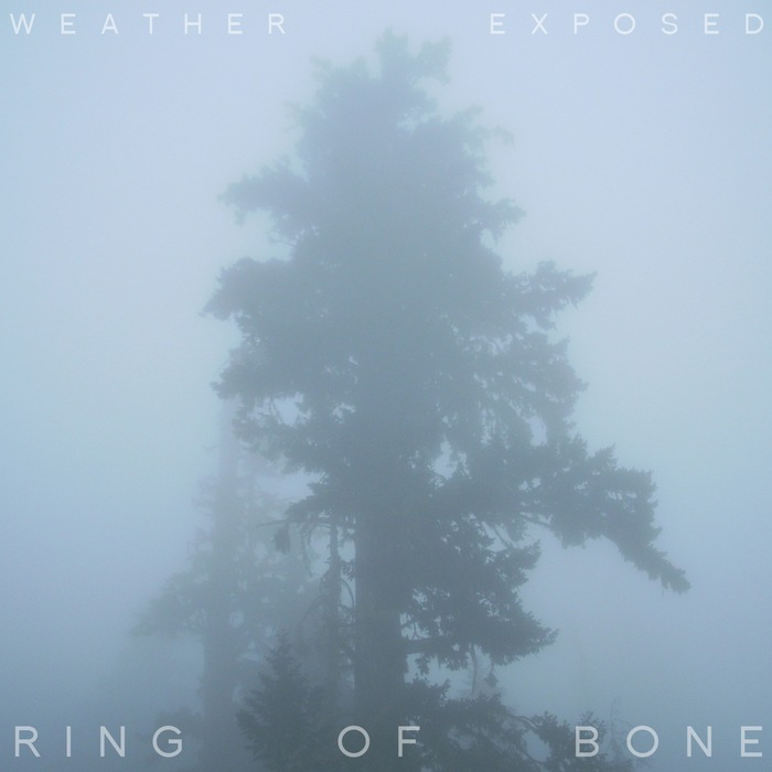 Weather Exposed - Ring of Bone